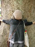 大木に抱きつくぶげまま.JPG