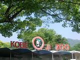 王子動物園入り口.JPG