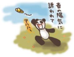 panda_02.jpg